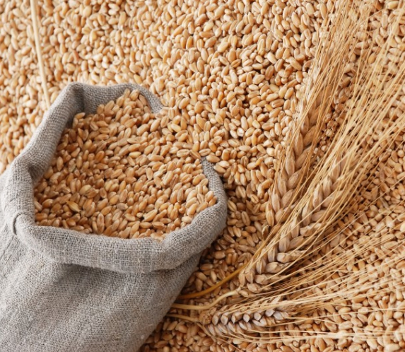 Измерение влажности зерна