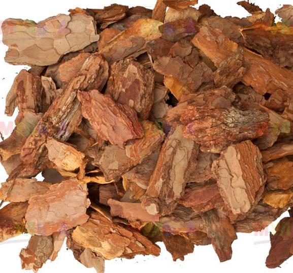 Измерение влажности древесной коры