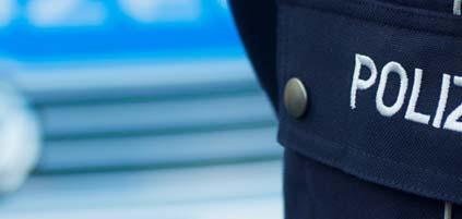 Полиция и правоохранительные органы