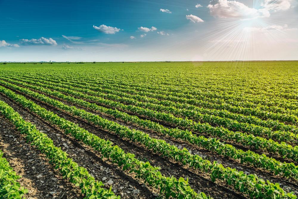 Смесители для сельского хозяйства